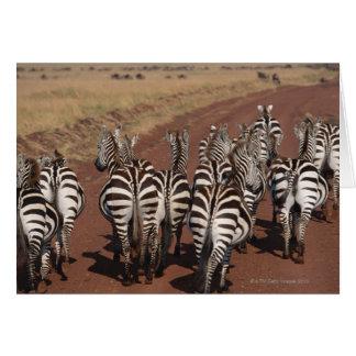 Grant Zebra 4 Card