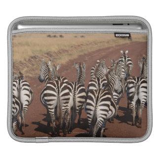 Grant Zebra 4 iPad Sleeve