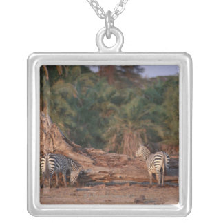 Grant Zebra 5 Silver Plated Necklace