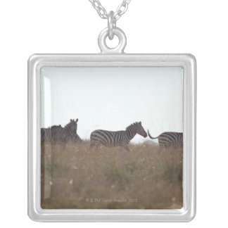 Grant Zebra 7 Silver Plated Necklace