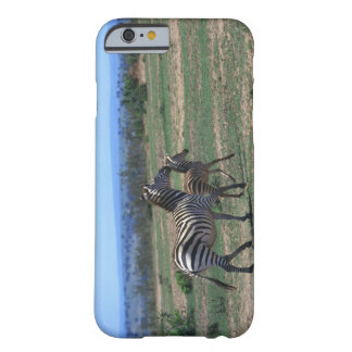 Grant Zebra Barely There iPhone 6 Case