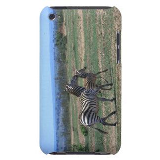 Grant Zebra iPod Touch Cases
