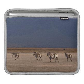 Grant Zebra iPad Sleeve