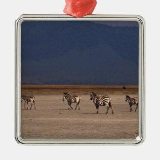 Grant Zebra Silver-Colored Square Decoration