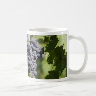 grape and vineyard basic white mug