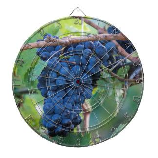 grape and vineyard dartboard