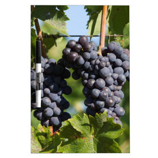 grape and vineyard dry erase board