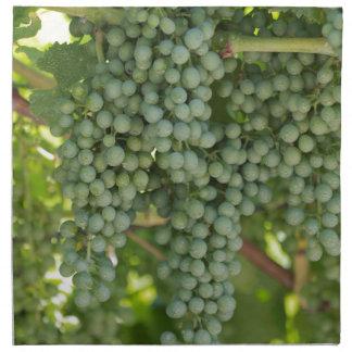 grape and vineyard napkin