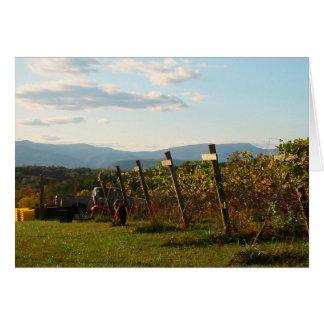 Grape harvest blank card