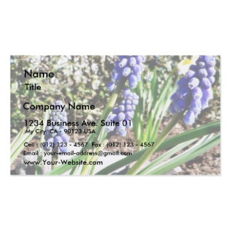 Grape Hyacinth Flowers Pack Of Standard Business Cards