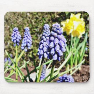 Grape Hyacinth Mousepad
