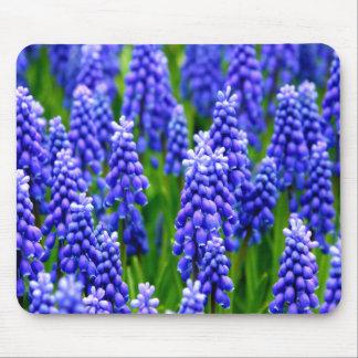 Grape Hyacinths Mousepads