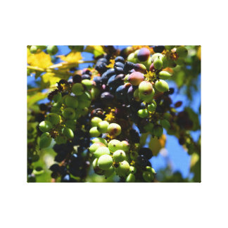 grape tree canvas print