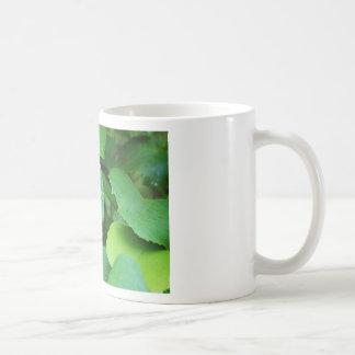 Grape Vine Basic White Mug