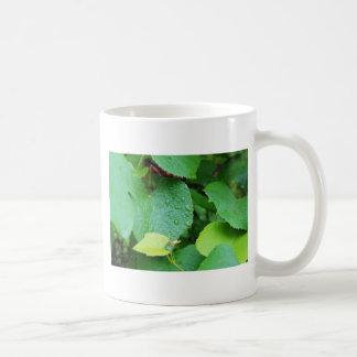 Grape Vine Classic White Coffee Mug