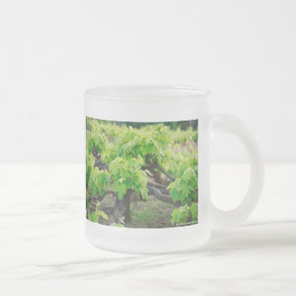 Grape vines frosted glass coffee mug
