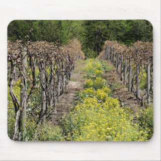 Grape Vines in Spring Mousepad