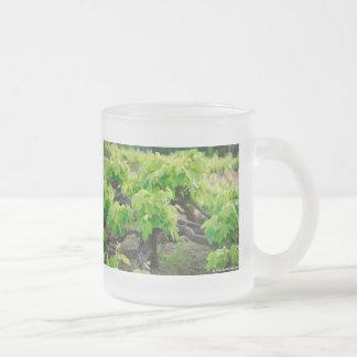 Grape vines frosted glass mug