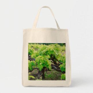 Grape vines grocery tote bag