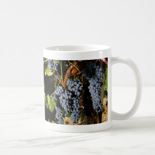 Grape Vineyard 2 Basic White Mug