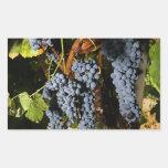 Grape Vineyard 2 Rectangular Sticker