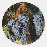 Grape Vineyard 2 Round Stickers