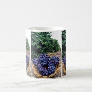 Grape Vineyard Basic White Mug