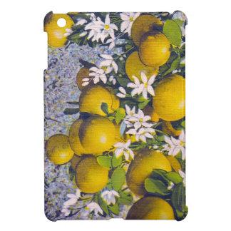 Grapefruit Blossoms in Florida iPad Mini Cover