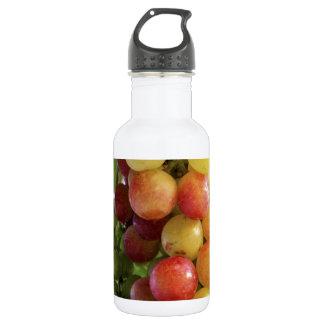 Grapes 532 Ml Water Bottle