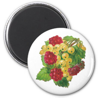 Grapes and Berries Magnets