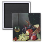 Grapes and plums magnets