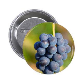 Grapes Pinback Button