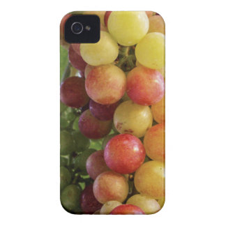 Grapes iPhone 4 Covers