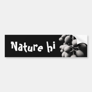 grapes for a sour day bumper sticker
