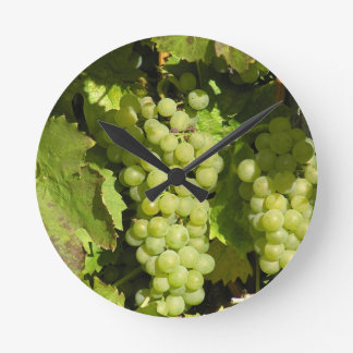 Grapes from Langenlois Round Clock