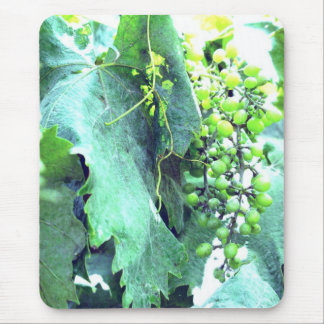 Grapes In The Making Mousepad