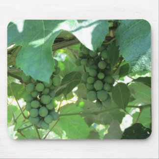 Grapes on the Vines Mouse Pad