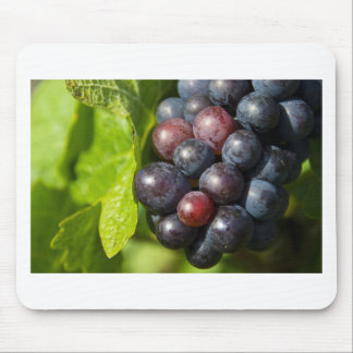 Grapes on vine mouse mat
