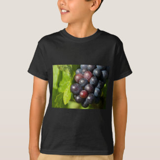 Grapes on vine T-Shirt