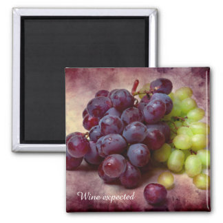 Grapes Red And Green Magnet