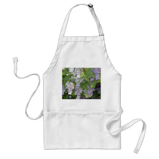 Grapes Standard Apron