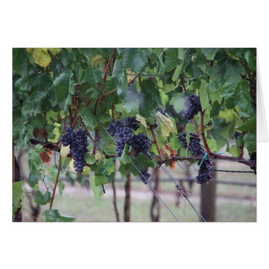 Grapes will be Wine Card