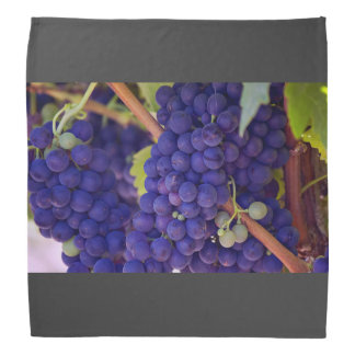 Grapevine Themed, Purple Grapes Grow On A Vine Wit Bandana