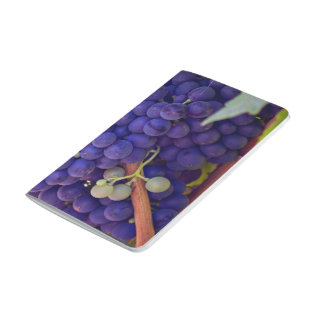 Grapevine Themed, Purple Grapes Grow On A Vine Wit Journal