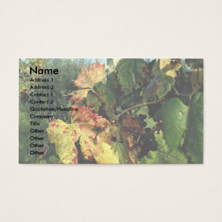 Grapevine, Tuscany, Italy Business Card