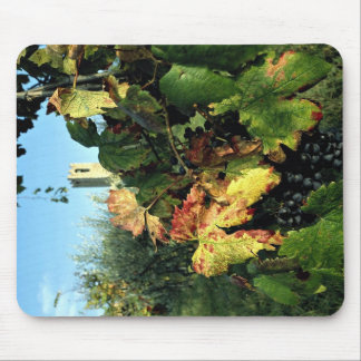 Grapevine Tuscany Italy Mouse Pad