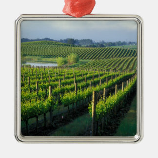 Grapevines in neat rows in California's Napa Christmas Ornament