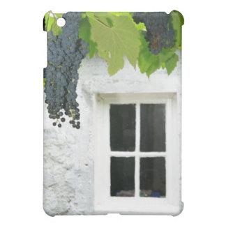 Grapevines iPad Mini Cases