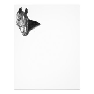 Graphite Horse Head 21.5 Cm X 28 Cm Flyer