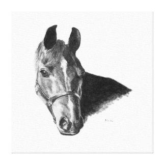 Graphite Horse Head Canvas Print